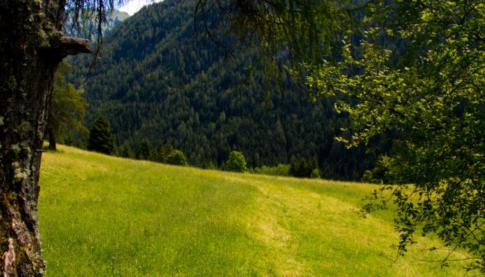 Trentino_-154